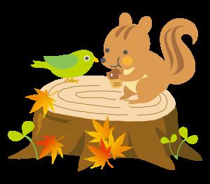 秋の相続と家族信託の相談会画像